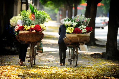 Flower bikes from night market - Romantic Hanoi city tour