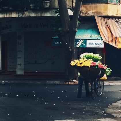 morning-vietnam-visa-new-zealand