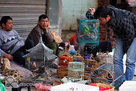 Bird Market in Hanoi Suburban - Hanoi day trips