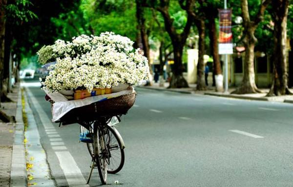 Daisy-bikes-on-every-street-of-Hanoi