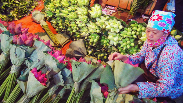 Bunches of lotus sold at Night Flower market in Hanoi - Things to do in Hanoi
