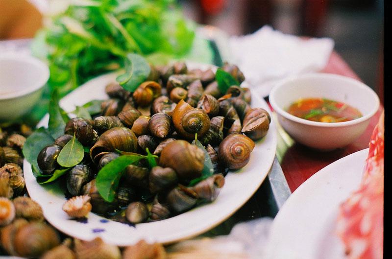 A delicious boiled snails - Hanoi street food tour