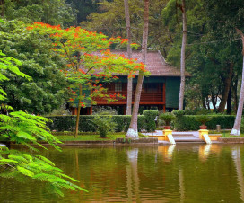 Uncle Ho stilt house - Hanoi city tours and activities