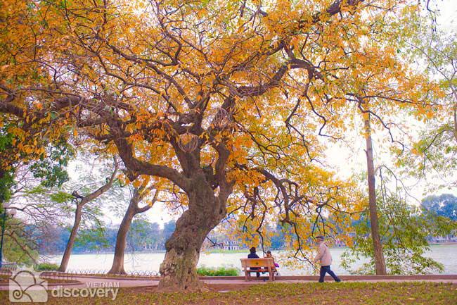 Walking around Hoan Kiem Lake - Hanoi Old Quarter walking tours