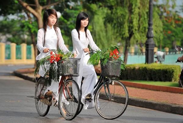 Flamboyant flowers on students' bike baskets