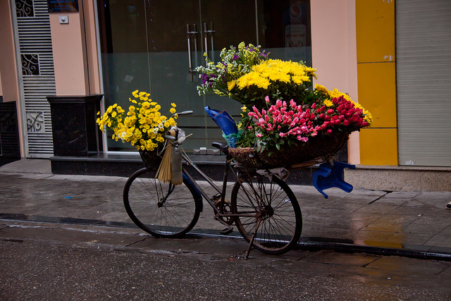 Flower bikes make Hanoi be differ from others - Hanoi attractions